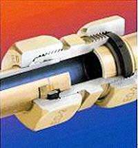Thermoplastic Polyether-ester Elastomer