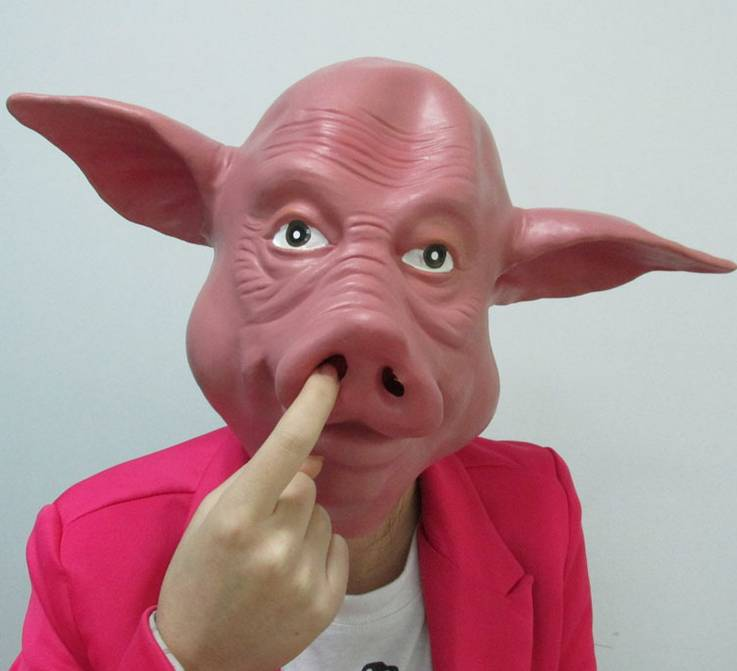 Youtumall Animal Happy Pig Head Mask For Fancy dress
