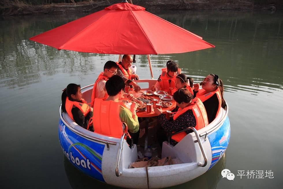popular bbq leisure boat for sale