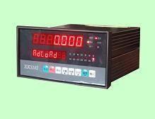 Weighing Controller XK3102