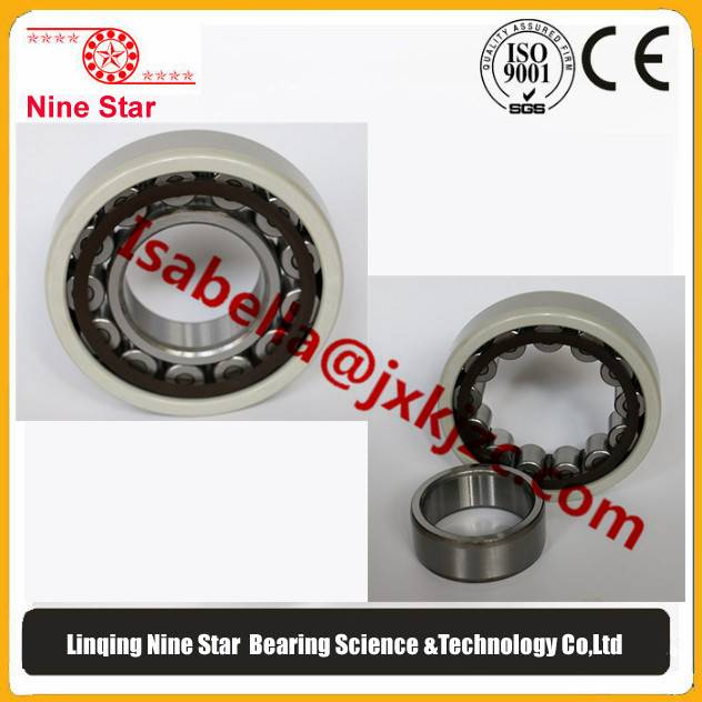 nu219c3 Insulated Bearing for traction motor