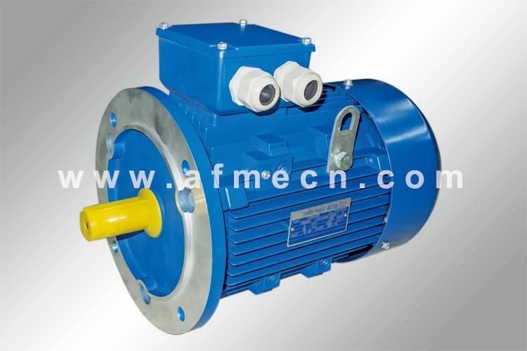 IE1 Standard Efficiency Three Phase Electric Motors