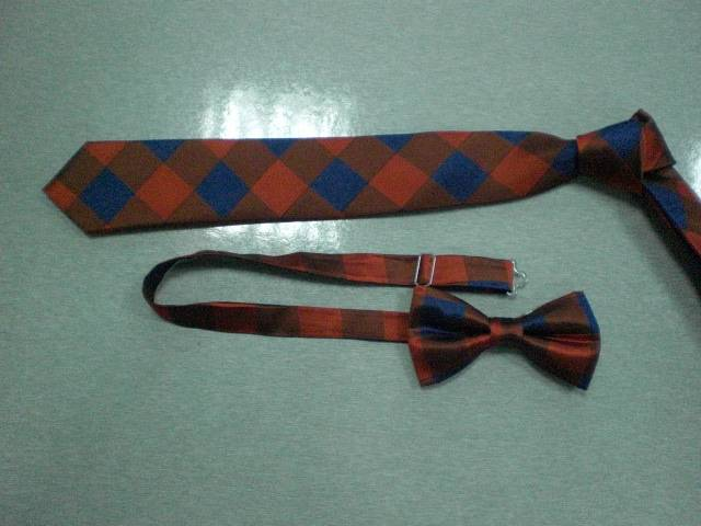 Polyester New Fashion Bow Ties