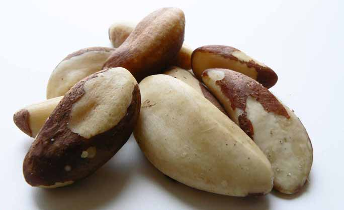 Cheap Organic Brazil Nuts