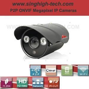 P2p Onvif 2.0MP 1080P Waterproof IR IP Camera (NS5362)