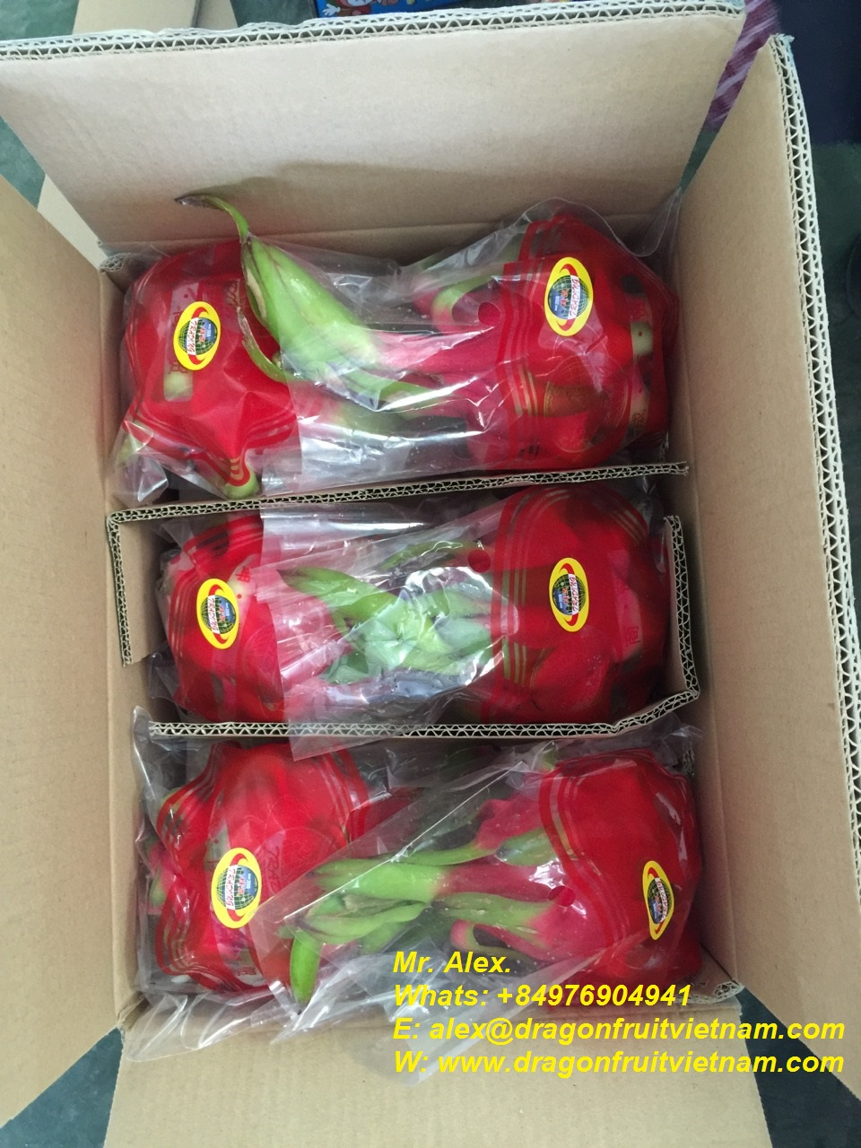 Hot Sales Dragon Fruit From Vietnam