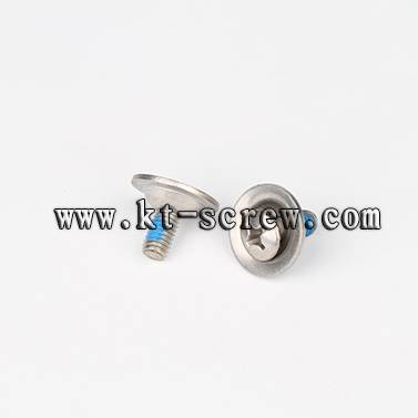 High quality stainless Steel special machine screw