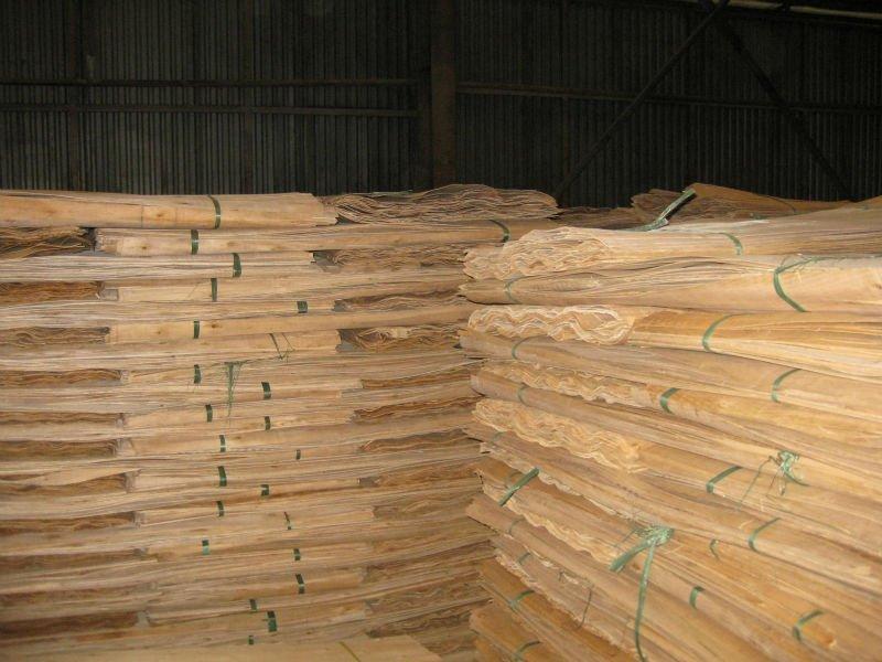 Pine / eucalyptus core veneer