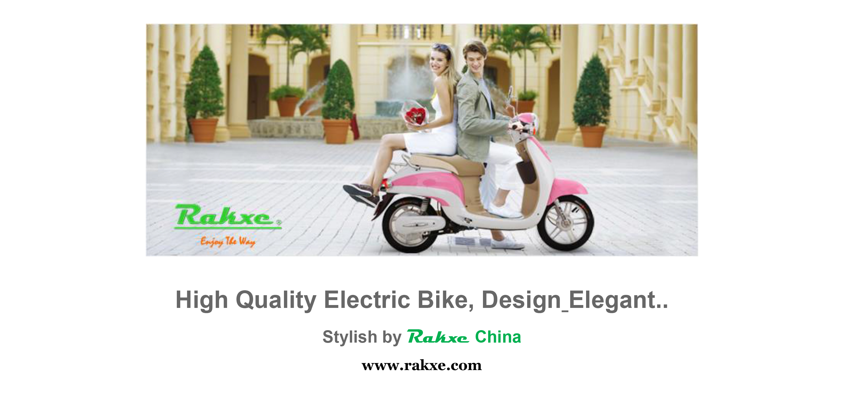 Offerring Electric Scooter, Electric Bike, Electric Bicycle, Electric Motorcycle, Electric Vehicle