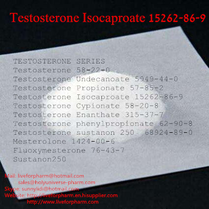 Testosterones IsocaproatePowders/ CAS15262-86-9/ 98%Pur