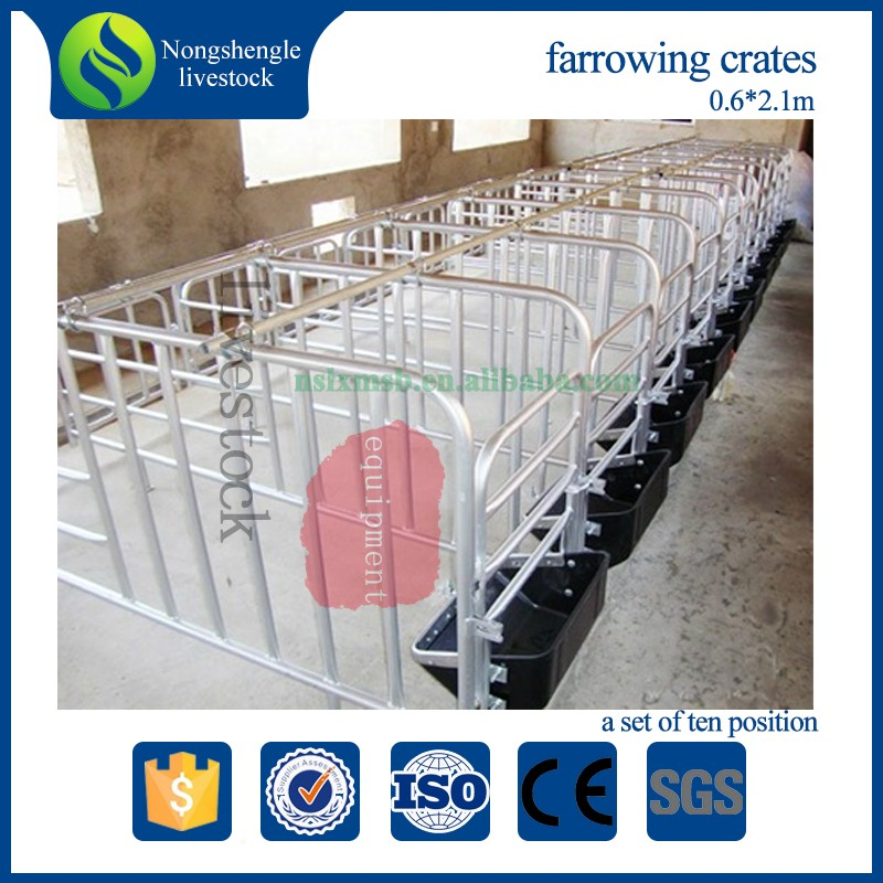 Hot dip galvanized swine stall gestation pig cages