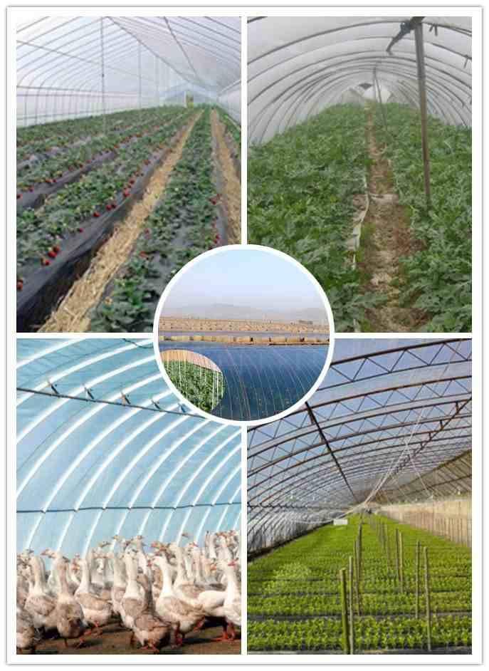 EVA agriculturalFilm