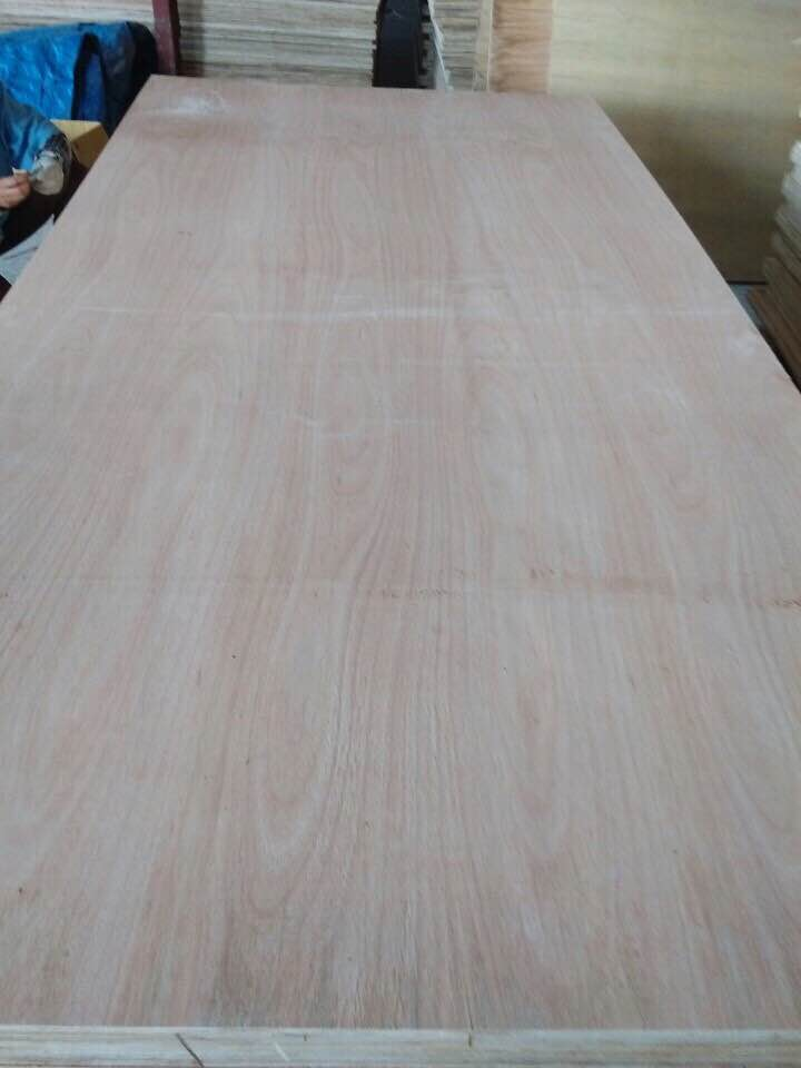 Sell Plywood from Vietnam factory