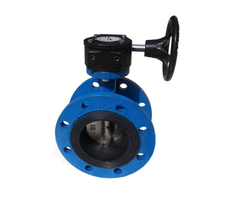 Wholesale 4 inch DN2501 concentric DI flanged butterfly valve