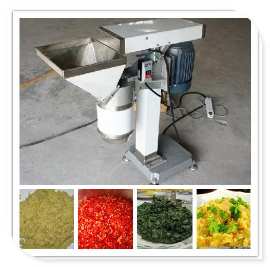 Multifunction Garlic Vegetable Paste Grinding Machine