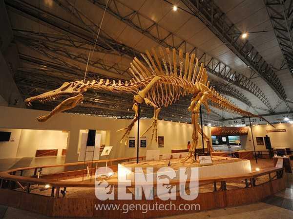 Fiberglass Spinosaurus,Spinosaurus Fossil