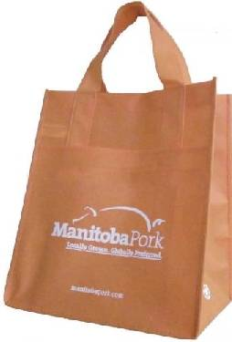 2012 new promotional shopping bags