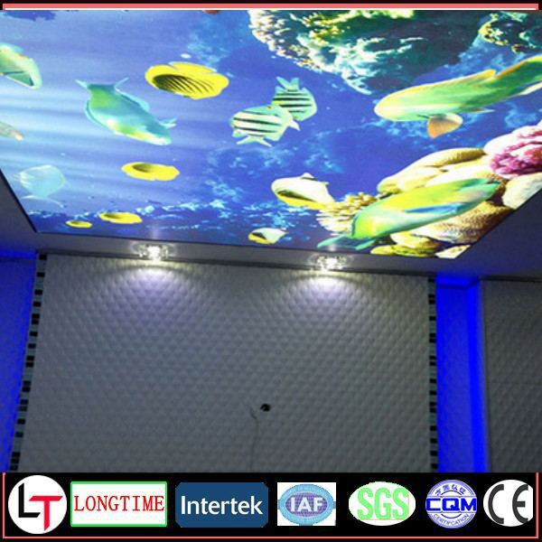 Hot Sale Haining Manufacturer of PVC Stretch Ceiling Film