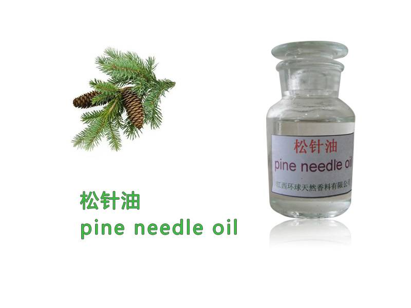 Natural spice oil of Natural Pine Needle Oil