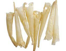 DRIED FISH BLADDER AT COMPETITVE PRICES