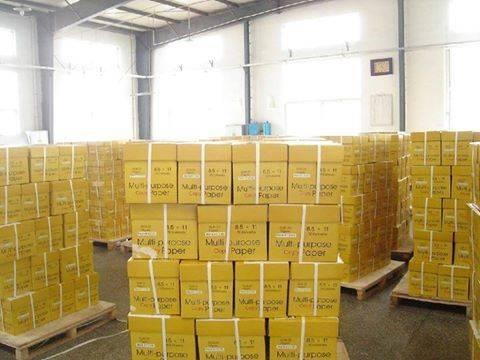 High Quality GOLD COPY PAPER 70g/80g Copy A4 Copy Paper