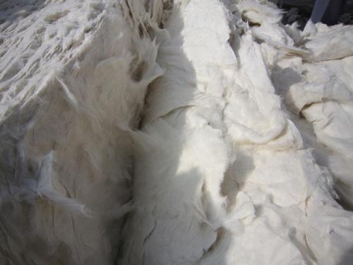 cotton yarn waste paksilver at yahoo dot com