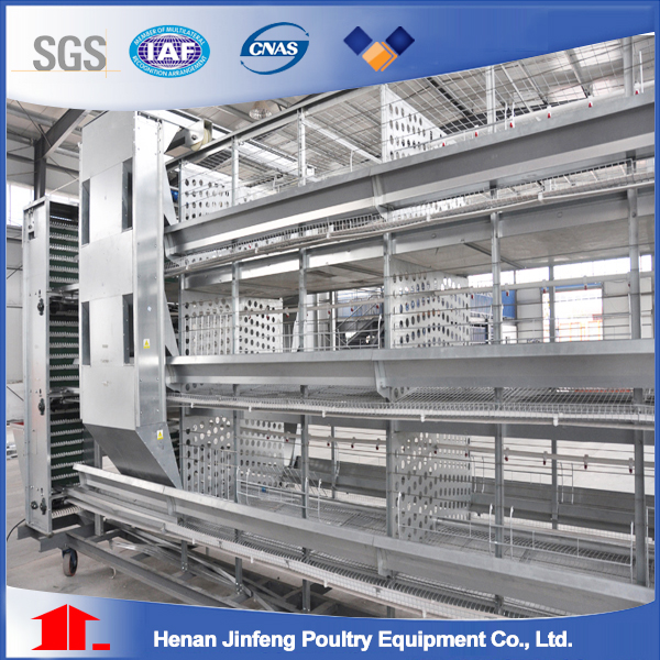 Henan jinfeng poultry equiment CO.,ltd