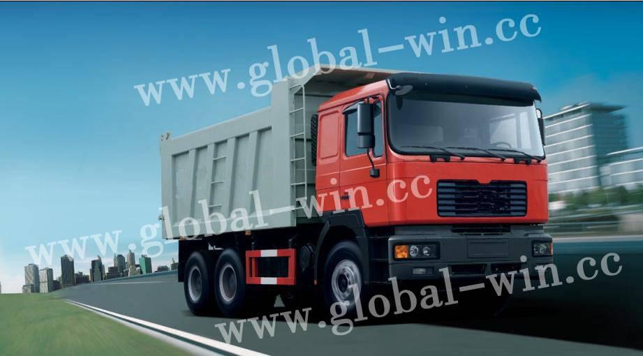 Dump Truck of GW 3250 FD MAN Power II
