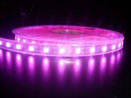 SMD5050 LED Strip, 60 led/meter