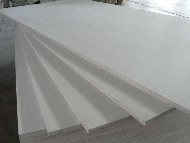 bleached poplar plywood
