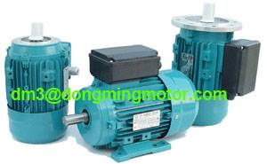 MY Series Aluminum Housing Single-phase Capacitor-run Motor