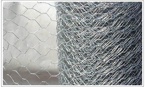 Hexagnal Wire Netting