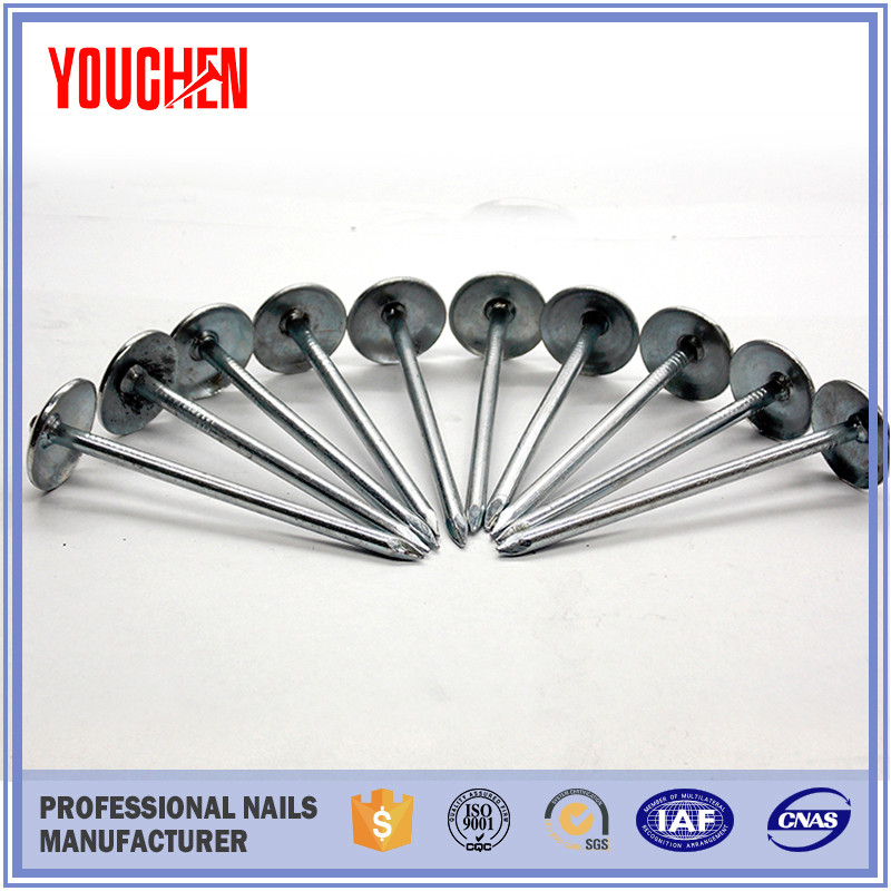 Wholesale price roofing umbrella nails