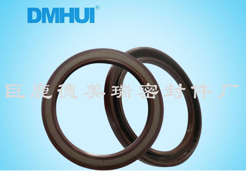 mixer truck parts hydraulic pump oil seal 70907/5.5