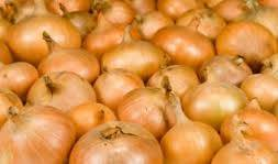 FRESH YELLOW/BROWN ONIONS