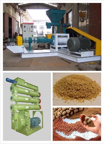 Fish feed pellets extruder for Fish Farming