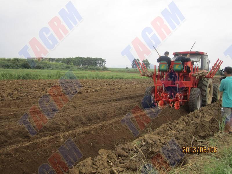 ISO9001 Standard cassava seed planter machine