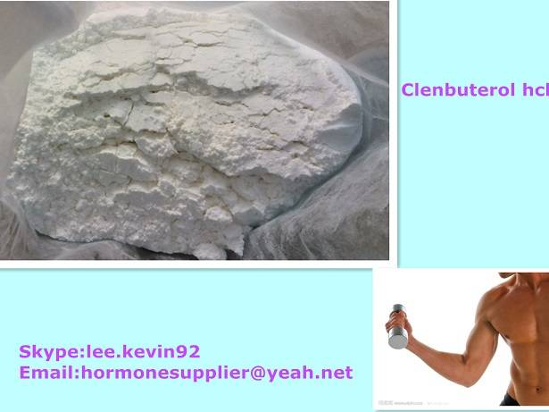Real Clenbuterol hcl powders Fat Burners: Clenbuterol for Weight Loss white powders cas21898-19-1