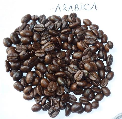 Arabica Roasted coffee beans High quality