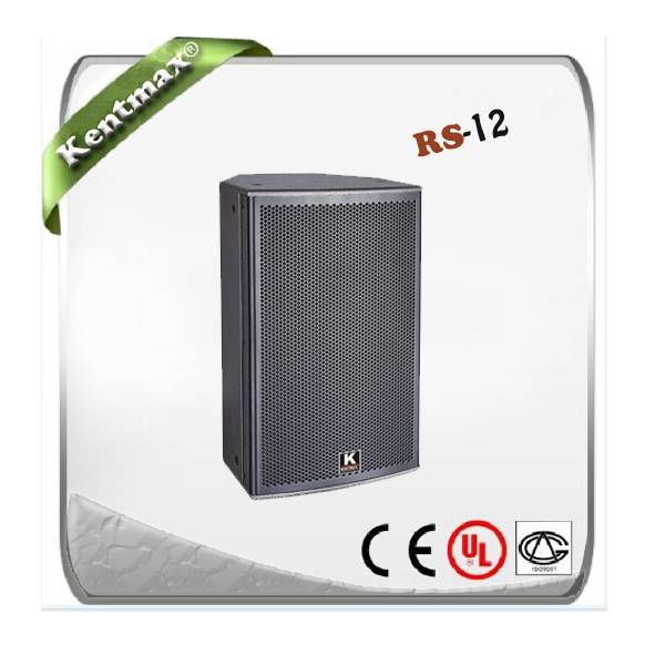 Supply RS-12 professional karaoke speaker