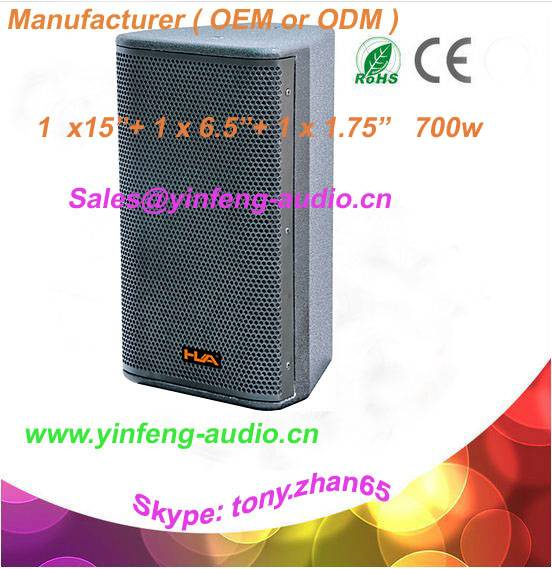 professional project perfromance speaker