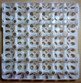 Plastic egg tray for 30 eggs
