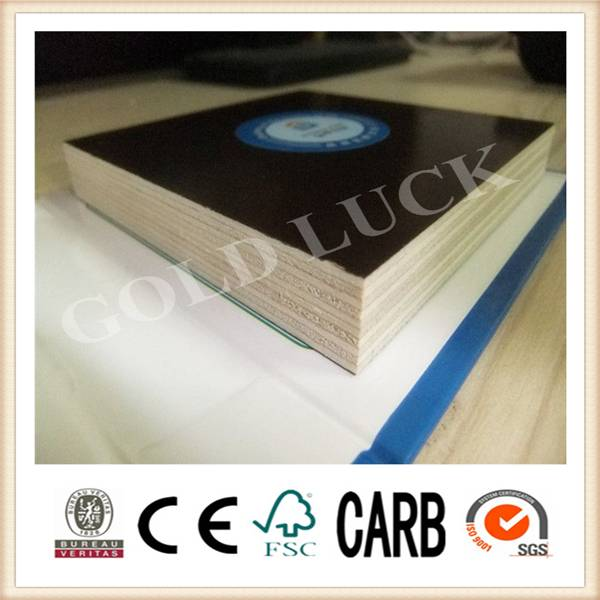 construction formwork made in china