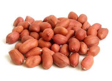 want to sell peanuts