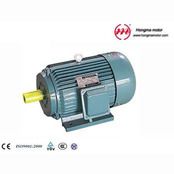 Y Series Cast-Iron Housing Three Phase Asynchronous Induction Motor