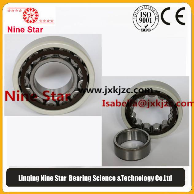 nu219c3 Insulated Cylindrical Roller Bearing