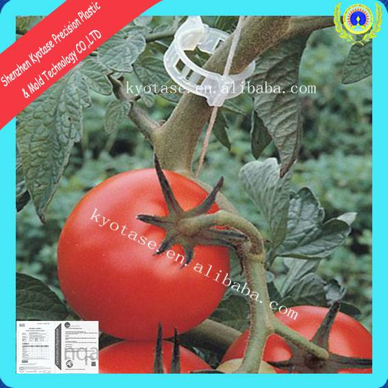 21mm tomato trellis clips