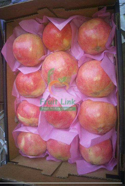 Fresh egyptian pomegranates by fruit link