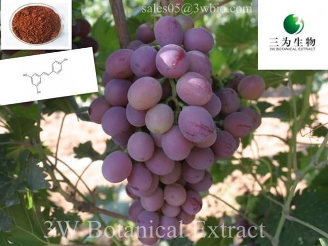 Resveratrol(sales05 AT 3wbio DOT com