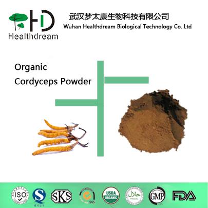supply Organic Cordyceps Powder